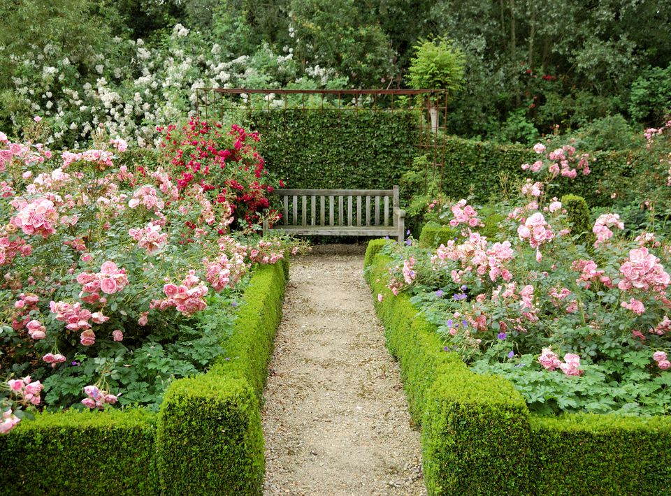 Hedges in a formal garden