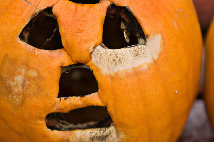 Your Halloween jack o lantern doesn't have to rot before Halloween gets here.