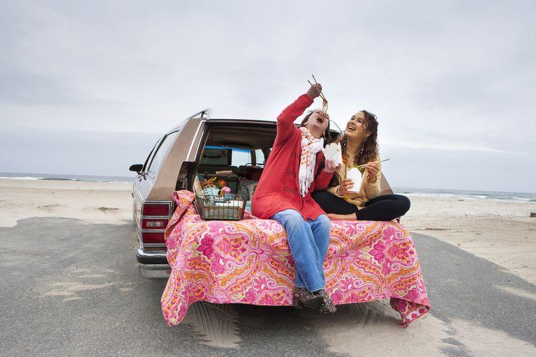 car food warmer options