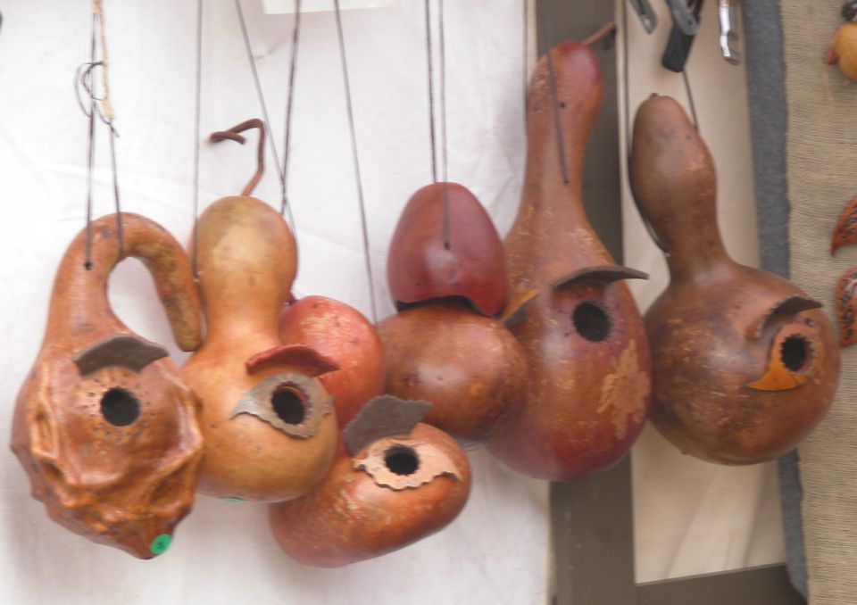 Gourd Bird Houses - Dried Gourds