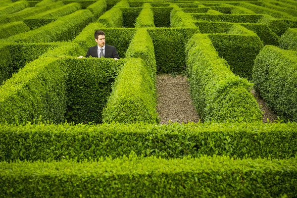 Caucasian businessman trapped in hedge maze