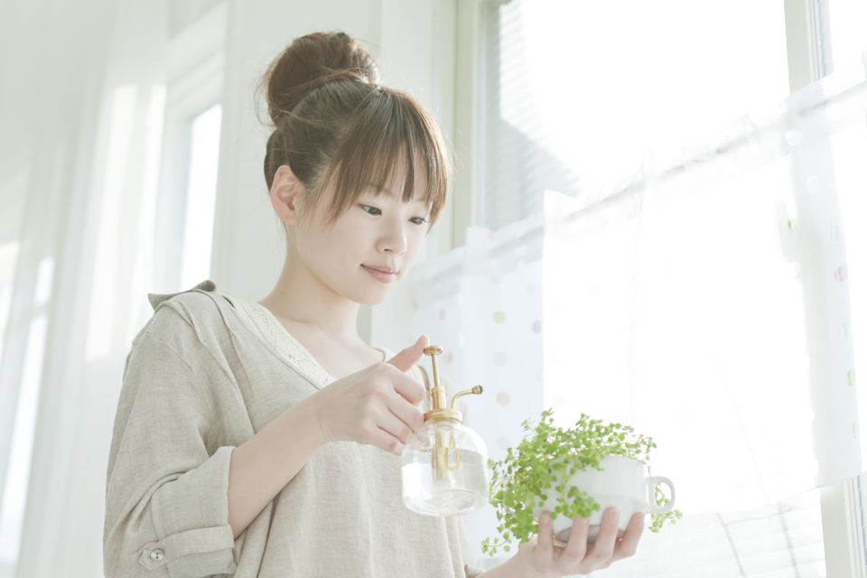 Young Woman Watering Houseplant