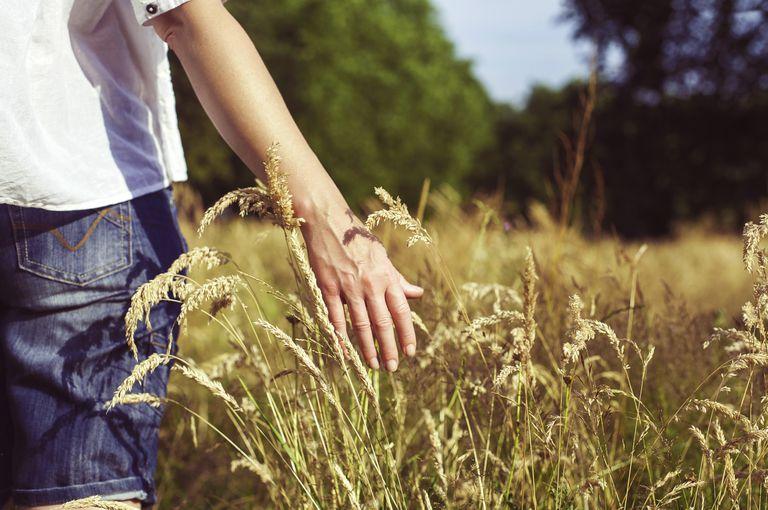Woman walking through grasslands, close-up of hand