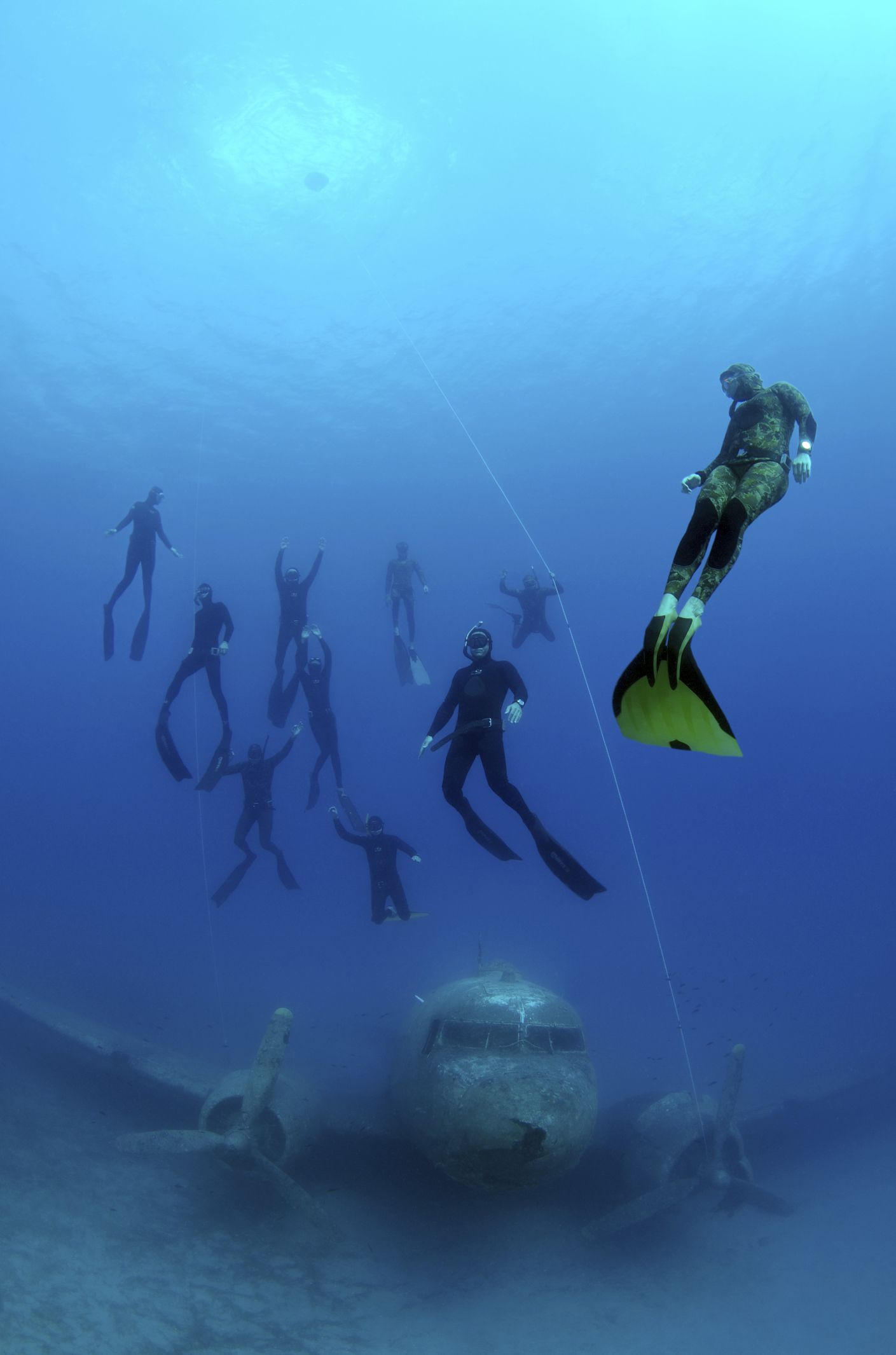 Top Freediving Wetsuit Basics To Know Before You Buy