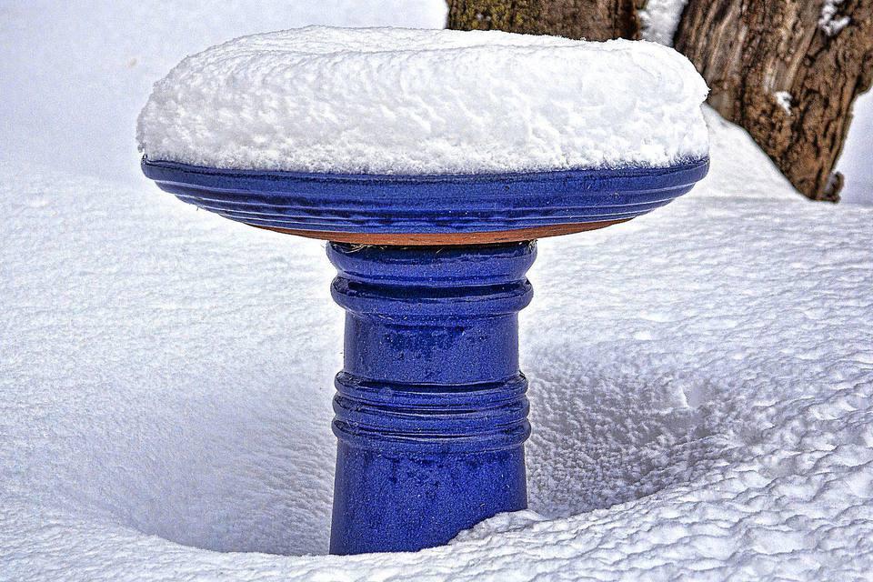 snow-bird-bath.jpg