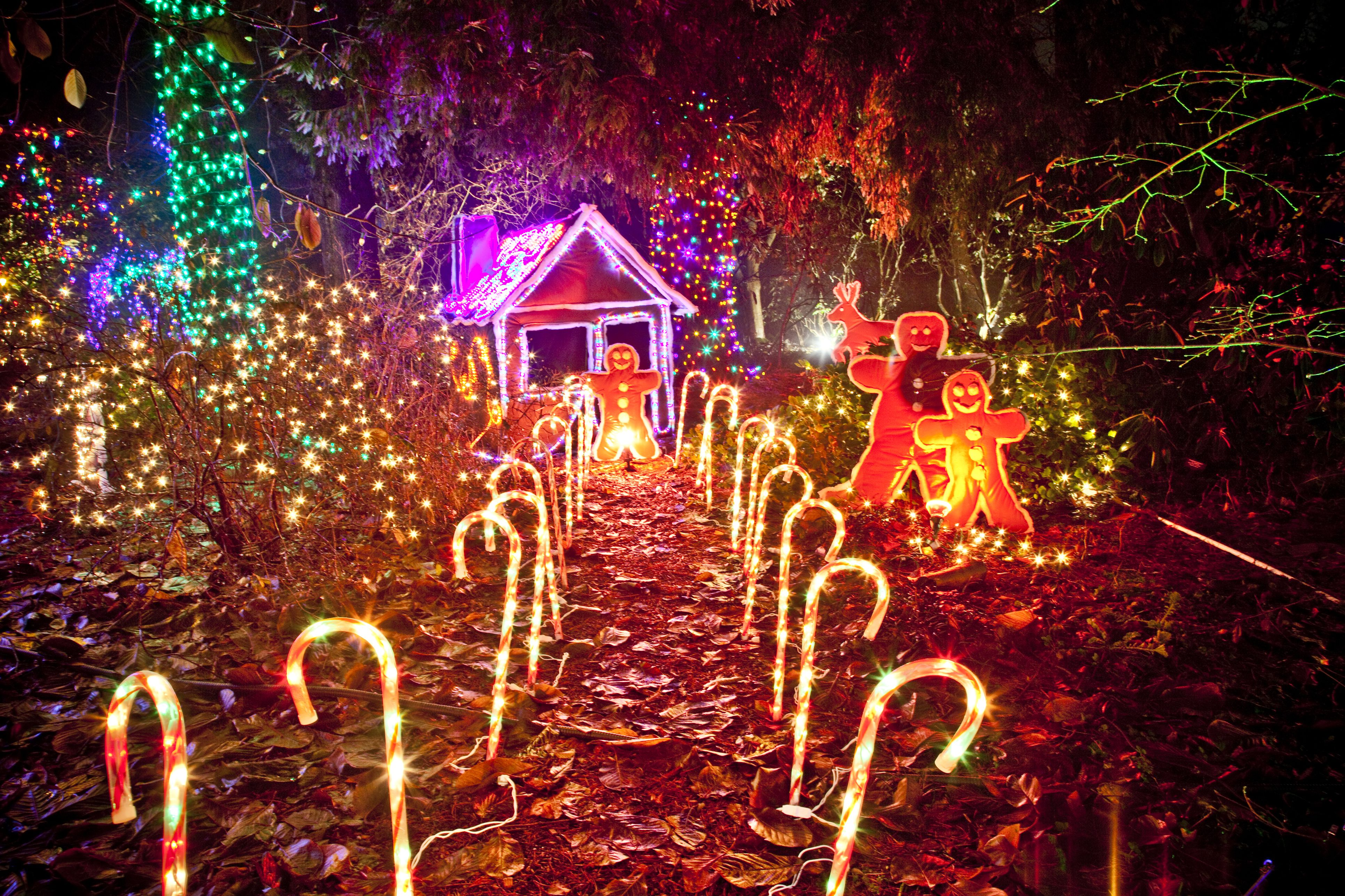 6 places to see the christmas lights in vancouver sciox Images