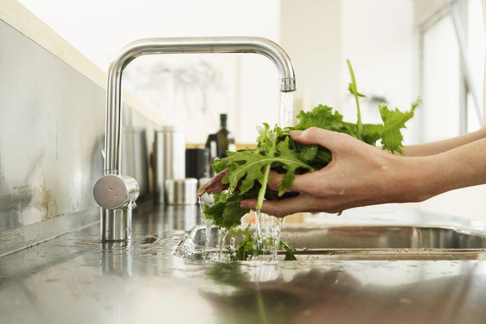 Washing lettuce in sink