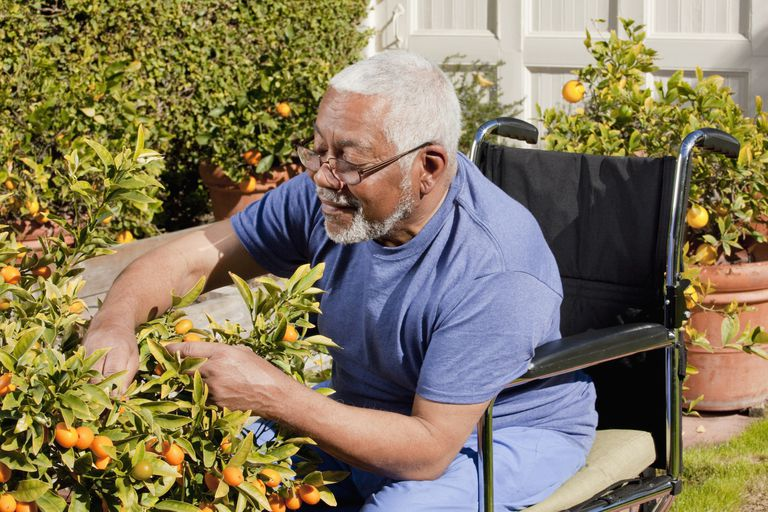 Adaptive Gardening Tools For People With Disabilities
