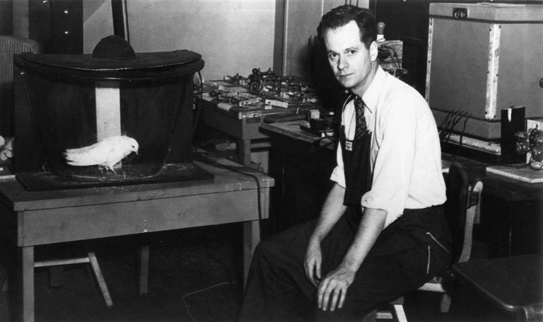 An image of B.F. Skinner in 1948