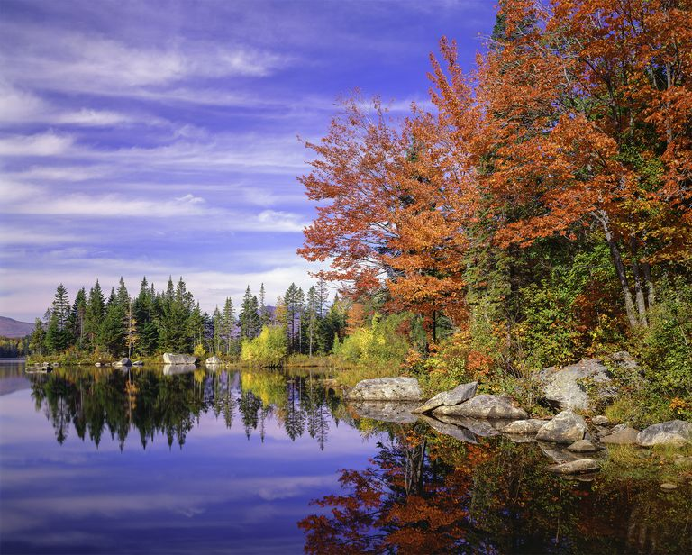 Peaceful colorful autumn pond