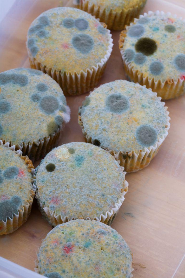 Moldy cupcakes