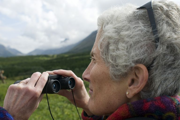Buying binoculars means considering many different options and tradeoffs.