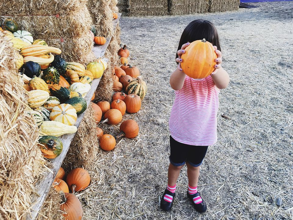 Full Length Of Girl Holding Pumpkin In Front Of Face At Farm