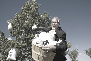 businessman harvesting money from a money tree