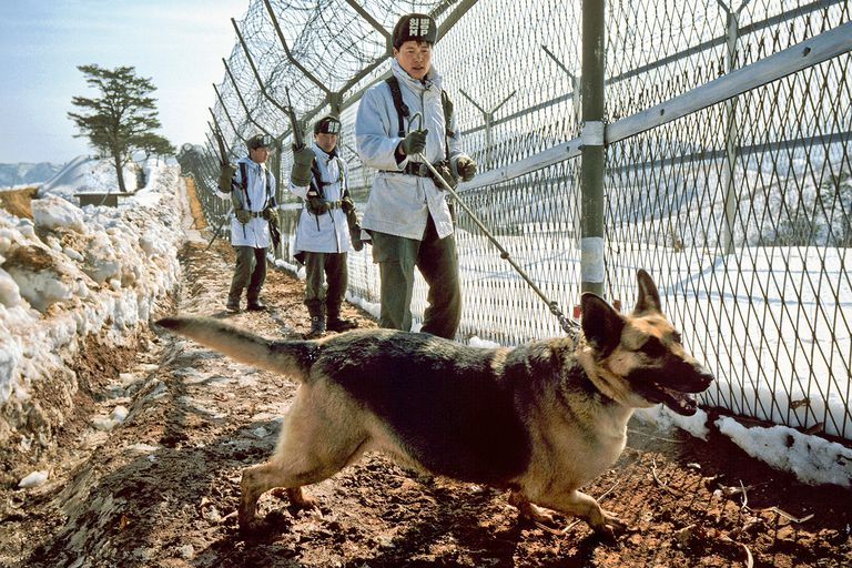 Armed men with dog along barbed wire fence at Korean DMZ.