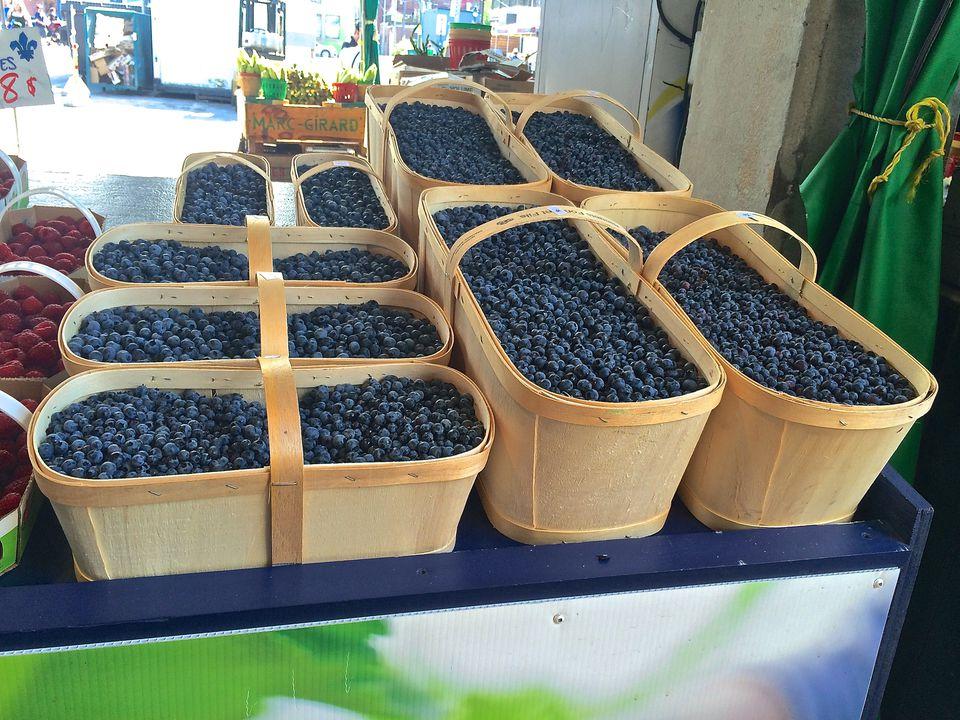 Montreal-blueberries.jpg