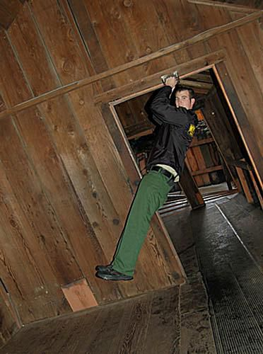 The Mystery Spot, Santa Cruz, California