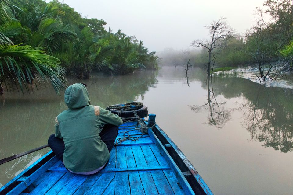 Boat On River At Sunrise, Sundarbans