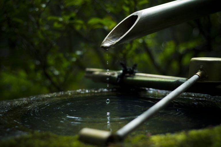 Bamboo Sput