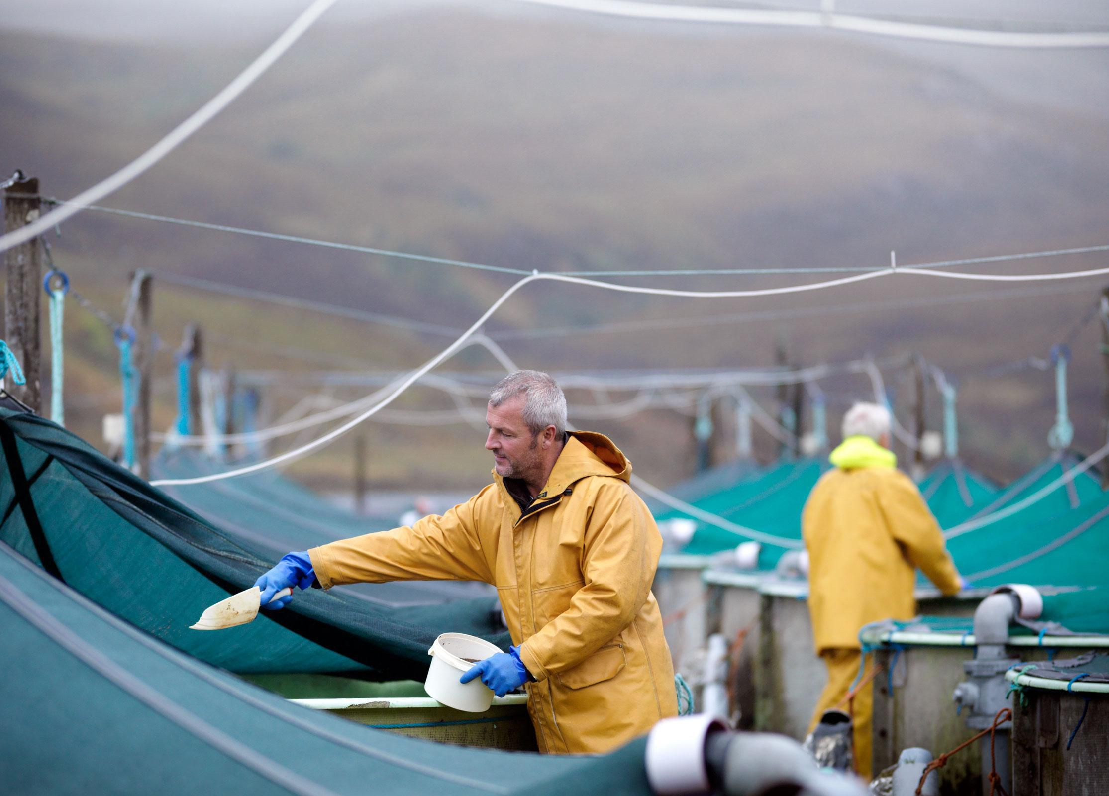 discover the top aquaculture countries