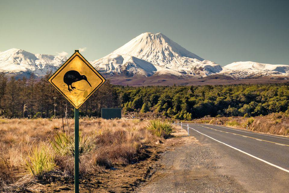 Skiing Kiwi in front of Mt Ngaruhoe