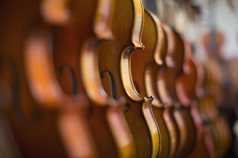 Violins in a row in a shop