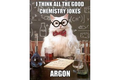 chemistry cat is worried there are no more chemistry jokes - Periodic Table Symbol Puns
