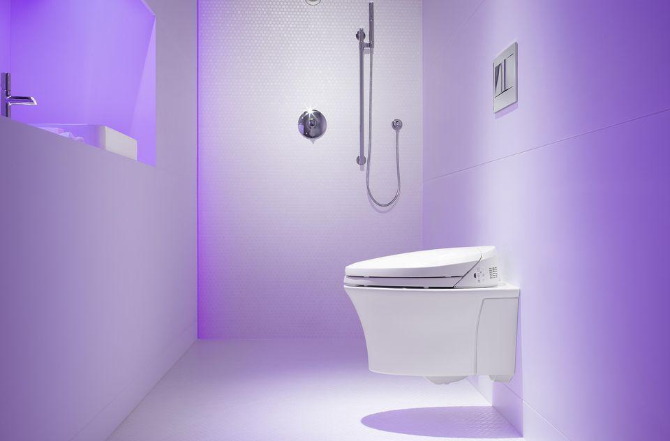 Kohler Low Flow Toilet