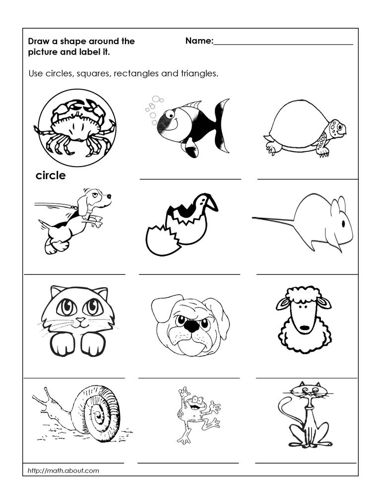 Mole Conversion Worksheets Geometry Worksheets For Students In St Grade Electromagnetic Spectrum Worksheet 1 Answers with Math Test Worksheets Pdf Worksheet   Parts Of The Heart Worksheet Pdf