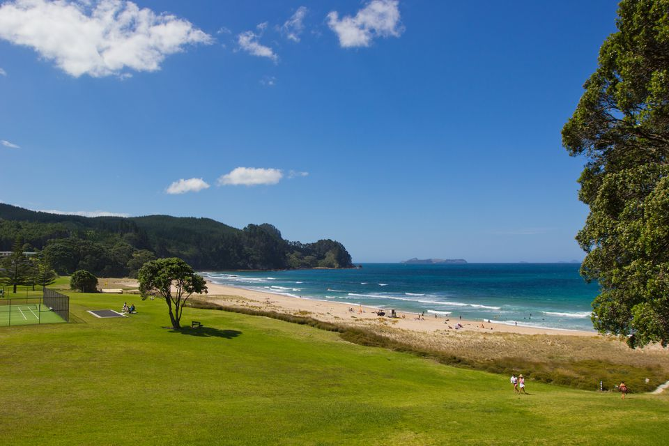 Sunny day on a New Zealand beach with white sand, fresh green juicy grass and turquoise color ocean under the blue sky