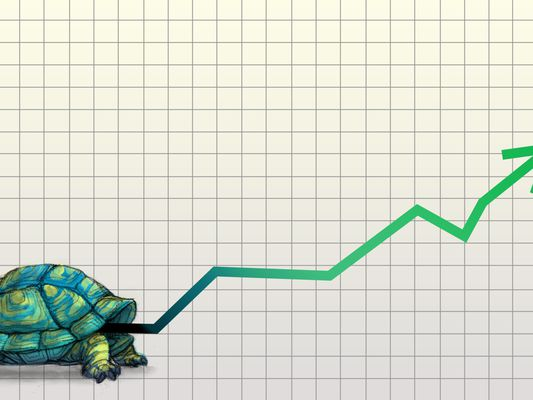 Slow and Steady Investing