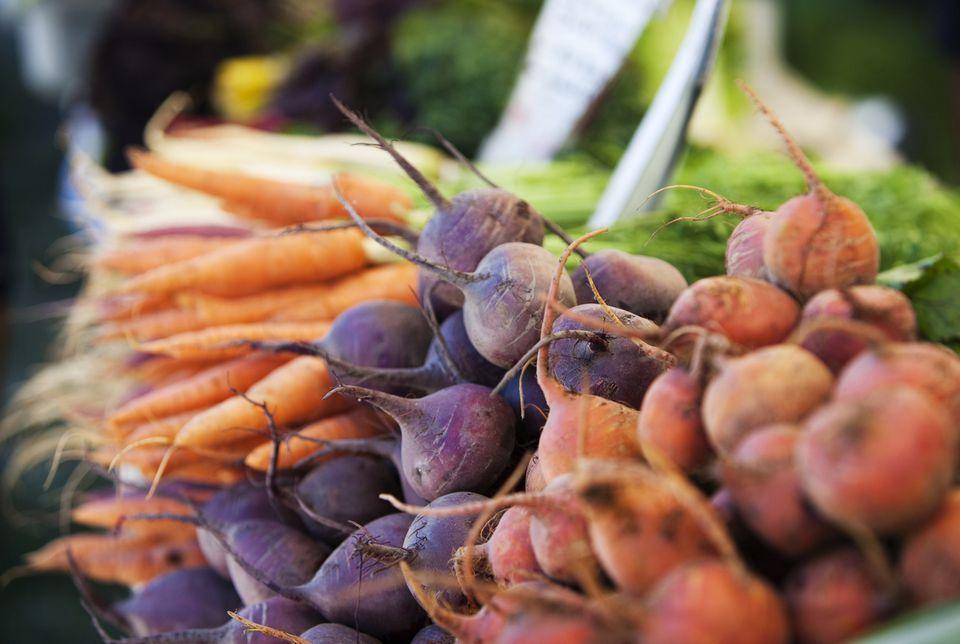 Root Crops Harvest