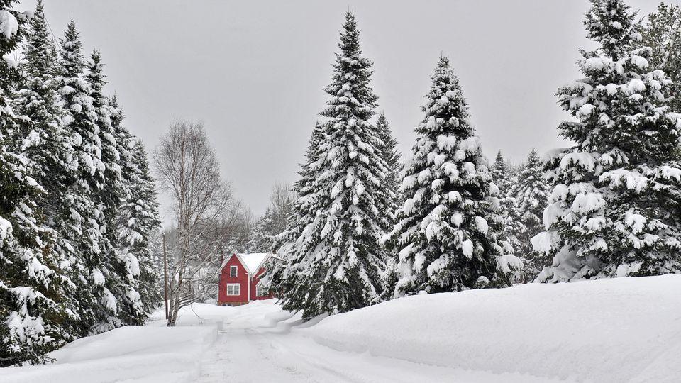Aroostook County Winter