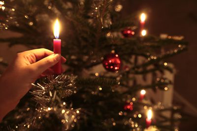 A Guide To Putting Up Your Christmas Tree - Christmas Lights Christmas Tree