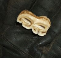 horse tooth