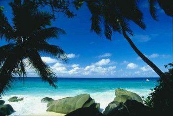 beach in south america