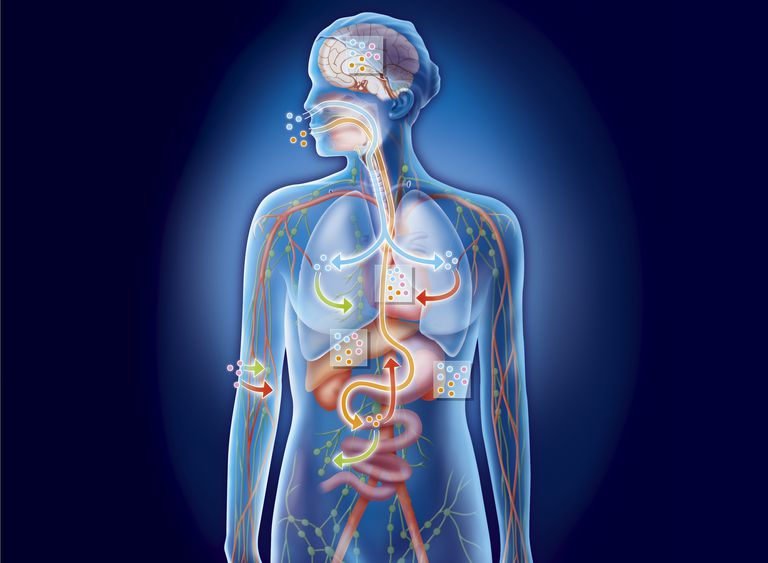 Body Nanoparticles