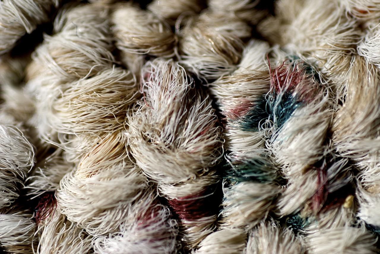 Understanding Carpet Fibers 101 Wool