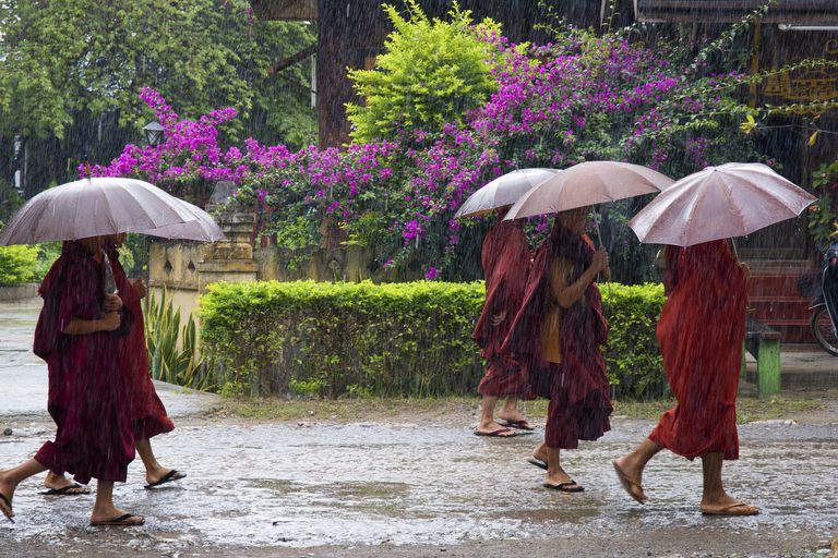 Asian monsoon monks