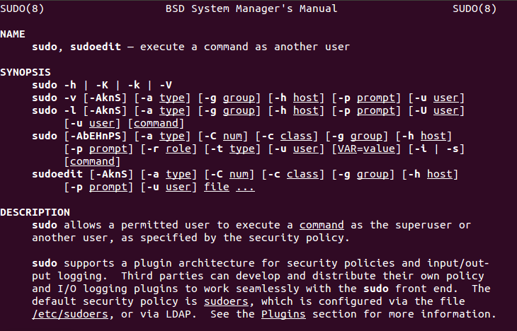 The sudo Command