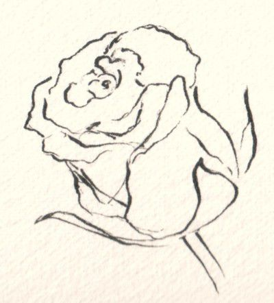 How to draw and sketch flowers in various mediums how to draw flowers in pen ink and color ccuart Image collections