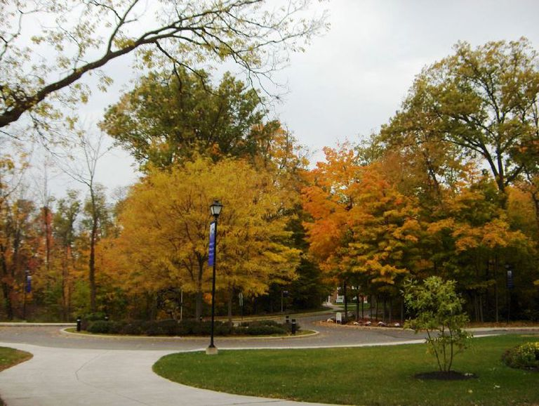 Bluffton University Campus in the Fall