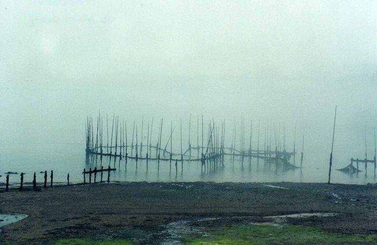 Deer Island Fish Weir in the Fog (New Brunswick, Canada)