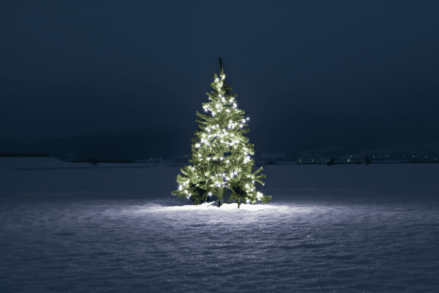 Snowy Christmas tree