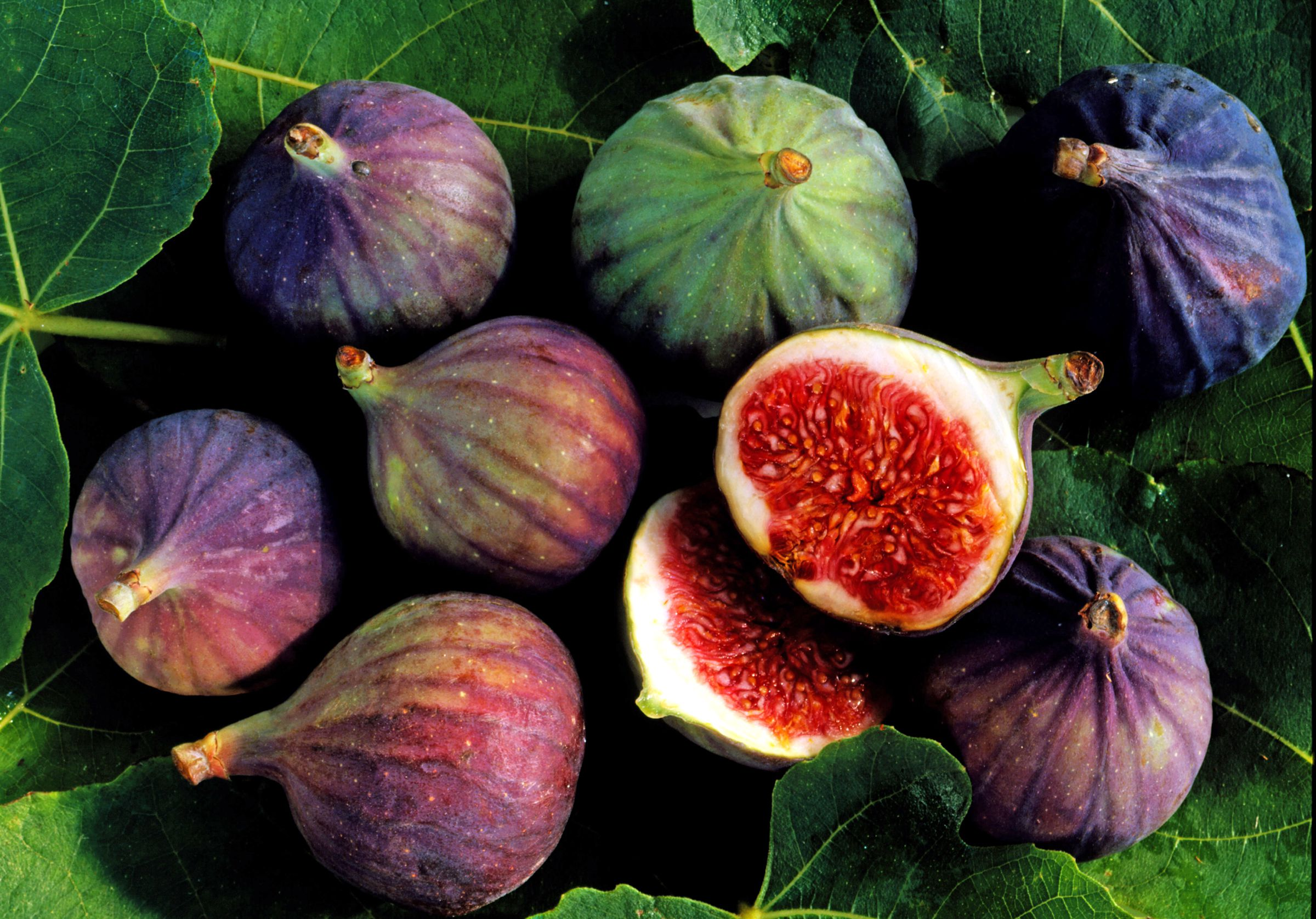 Helpful Tips On Measuring And Cooking With Figs