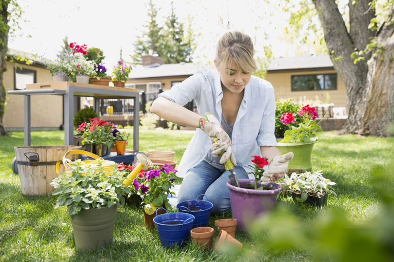 young woman planting flowers in garden