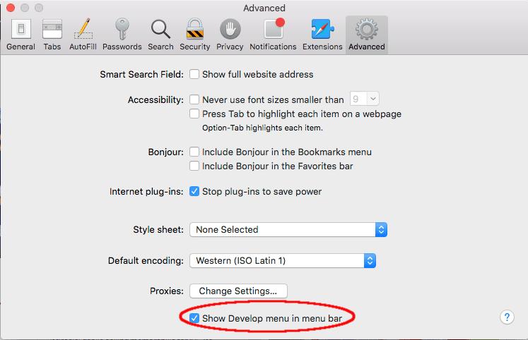 how to open developer tools in safari
