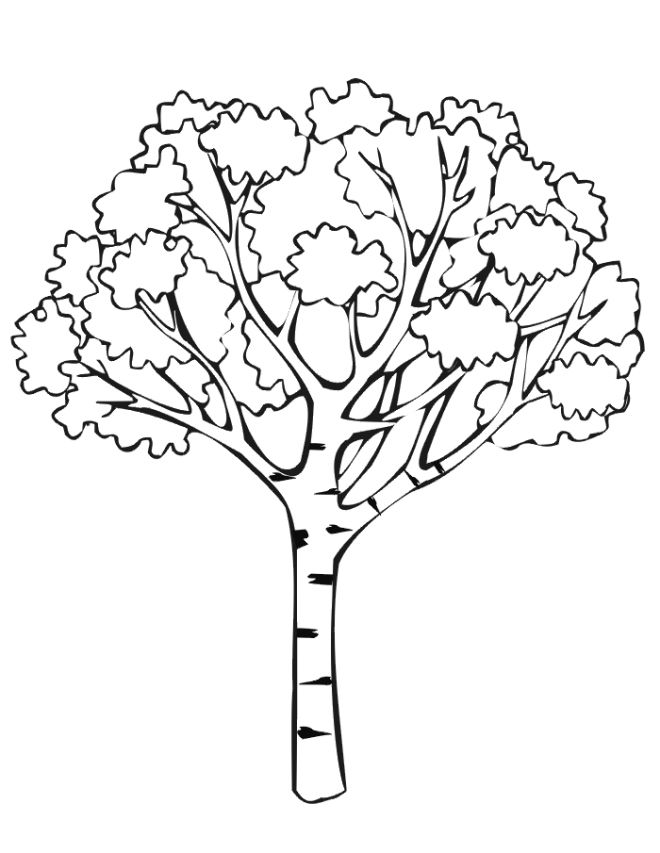 Print Activities Fall Coloring Pages A Tree With Leaves