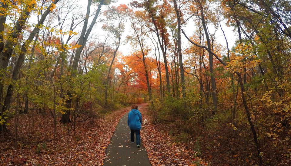 Autumn in Bellmore, Long Island