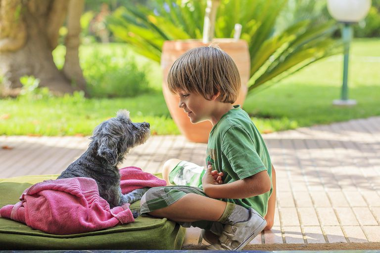 boy talking with his dog - constructed dialogue